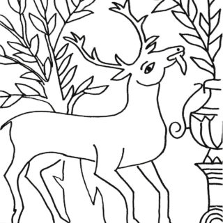 Coloriage cerf